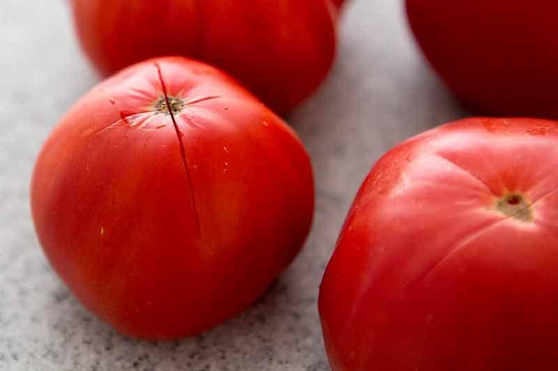 pasta-pomodoro-method-1