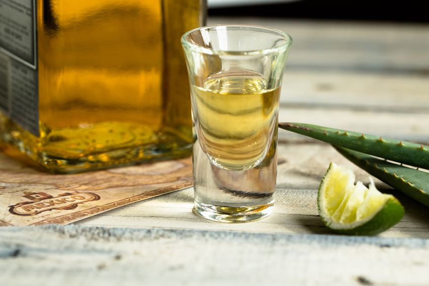 Close-Up Of Tequila Shot By Lime And Aloe Vera On Table