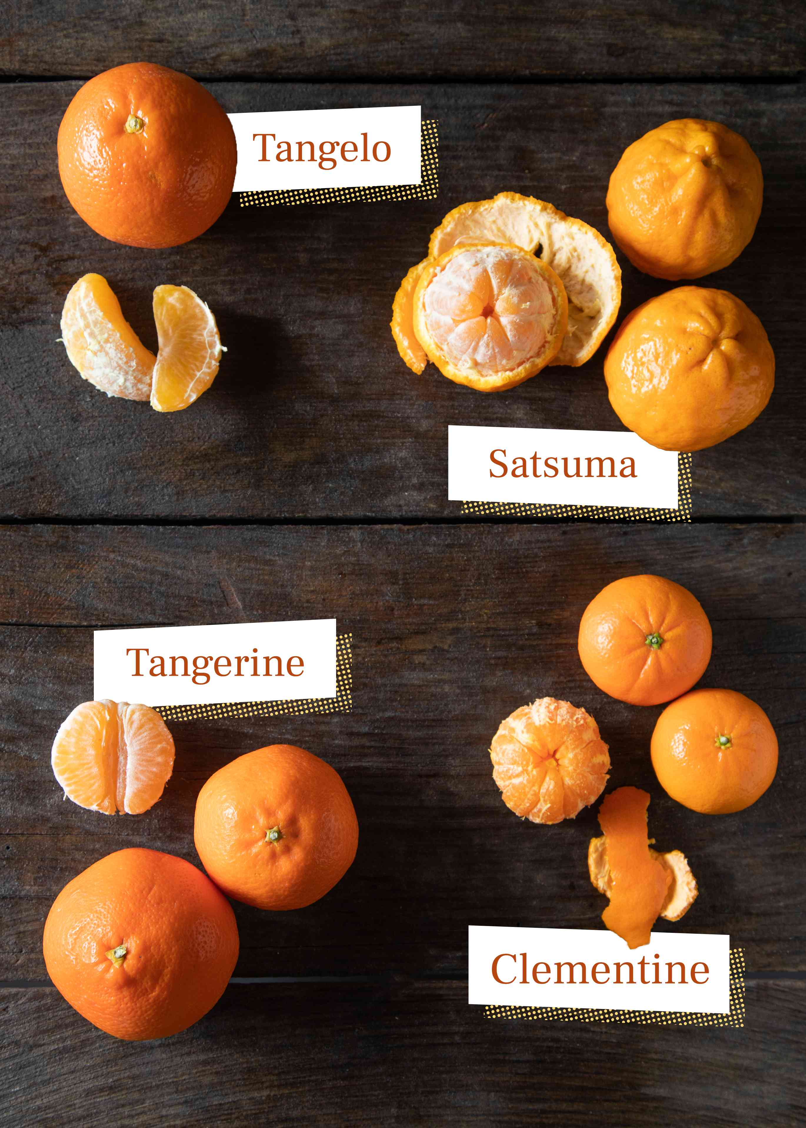 Mandarin varieties, tangelo, satsuma, tangerine, clementine on dark background