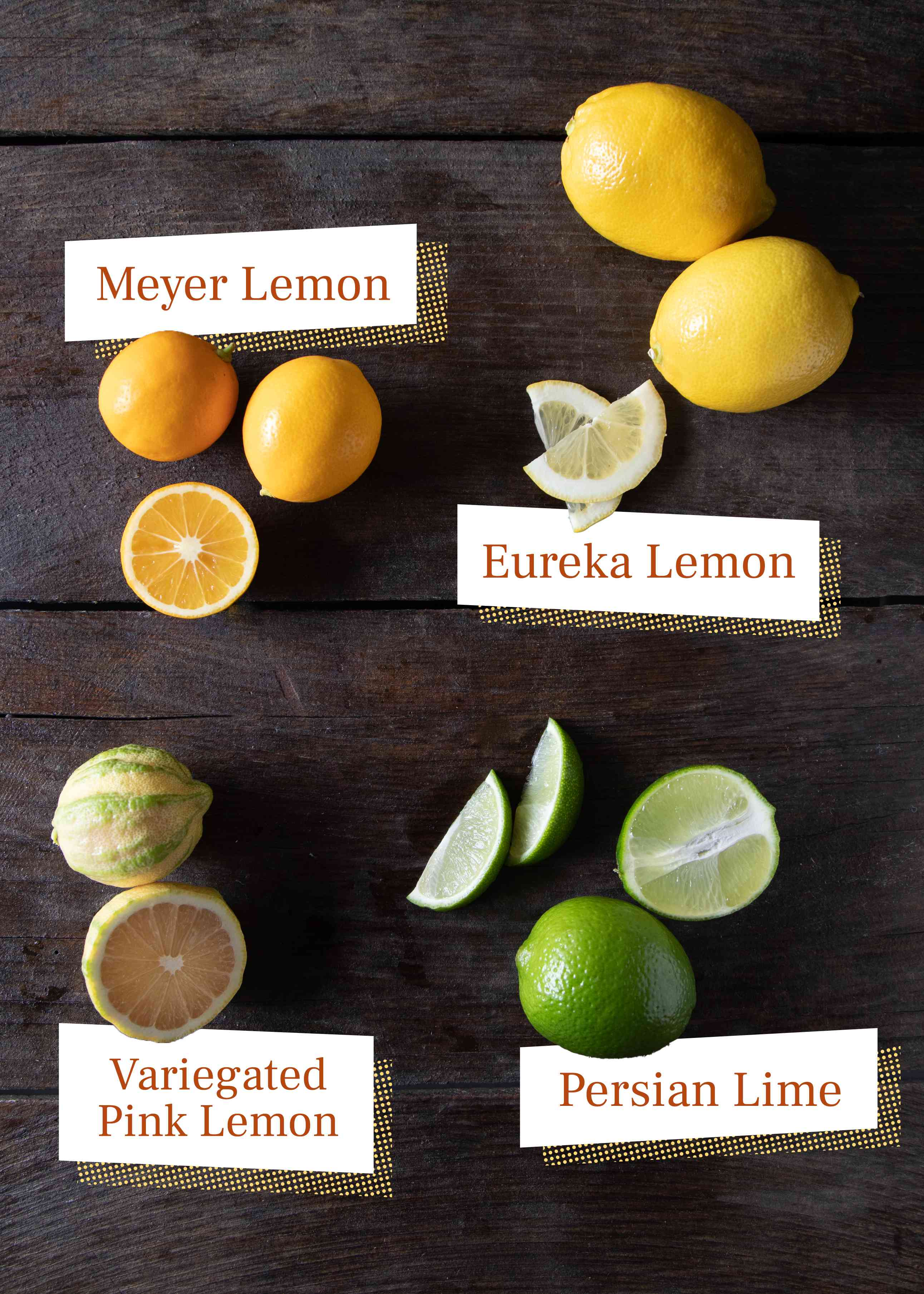 Lemon varieties, Meyer lemon, eureka lemon, pink lemon, and Persian lime
