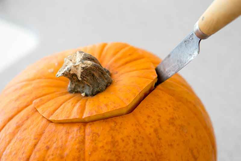 removing pumpkin seeds from pumpkin