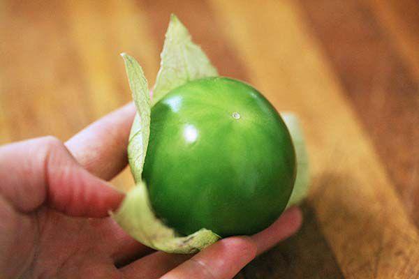 chile-verde-method-2