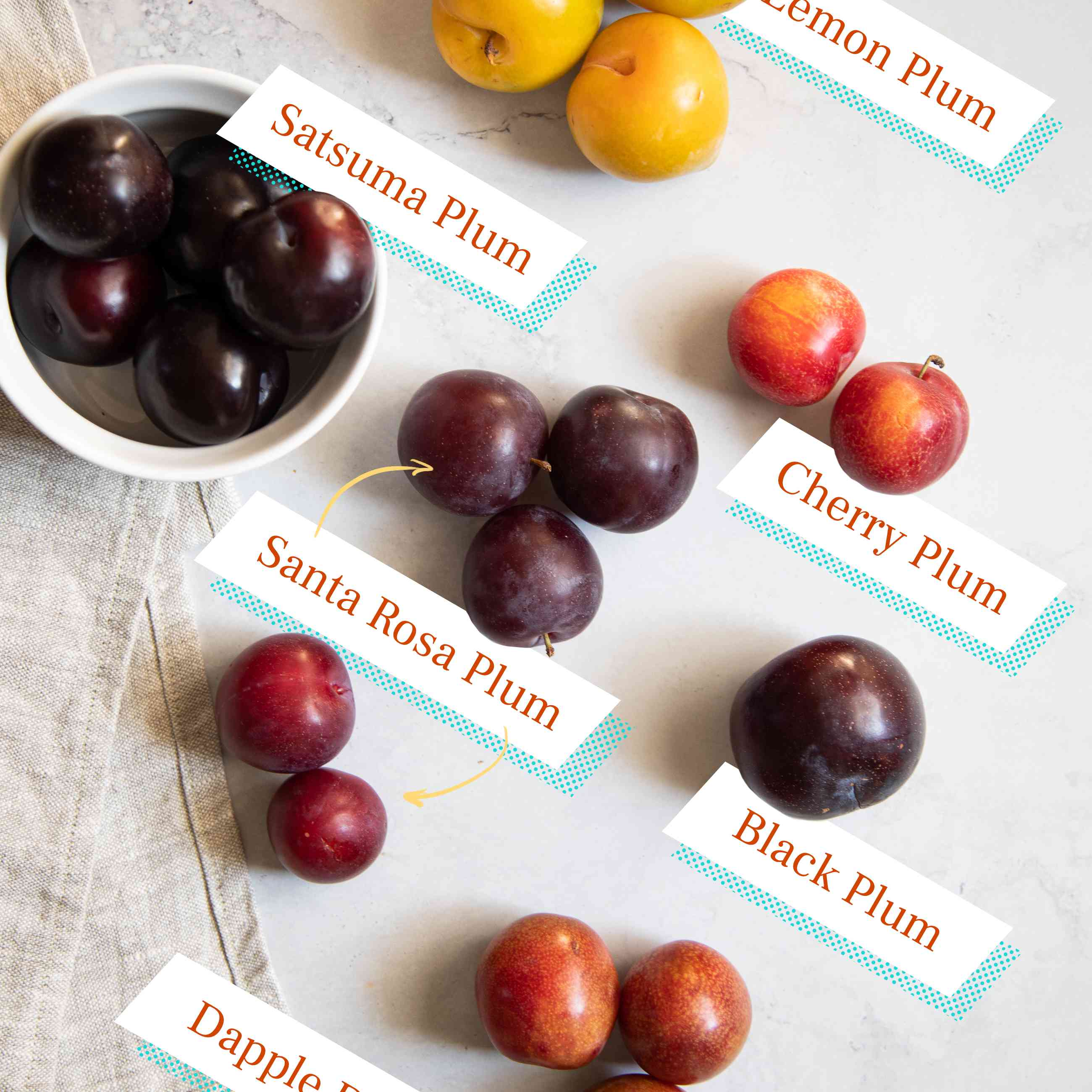 Types of plums with labels