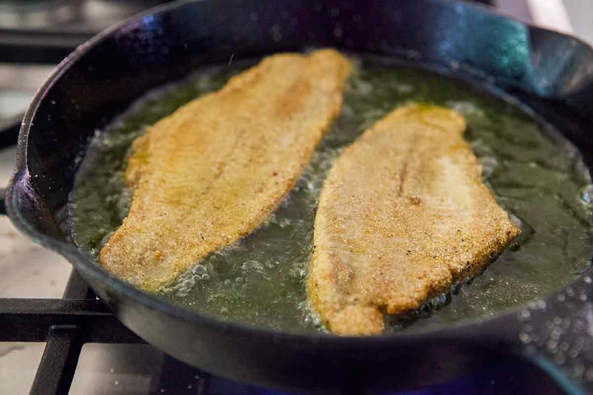 fried-catfish-method-4
