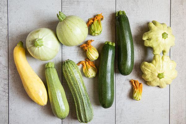 Varieties of summer squash