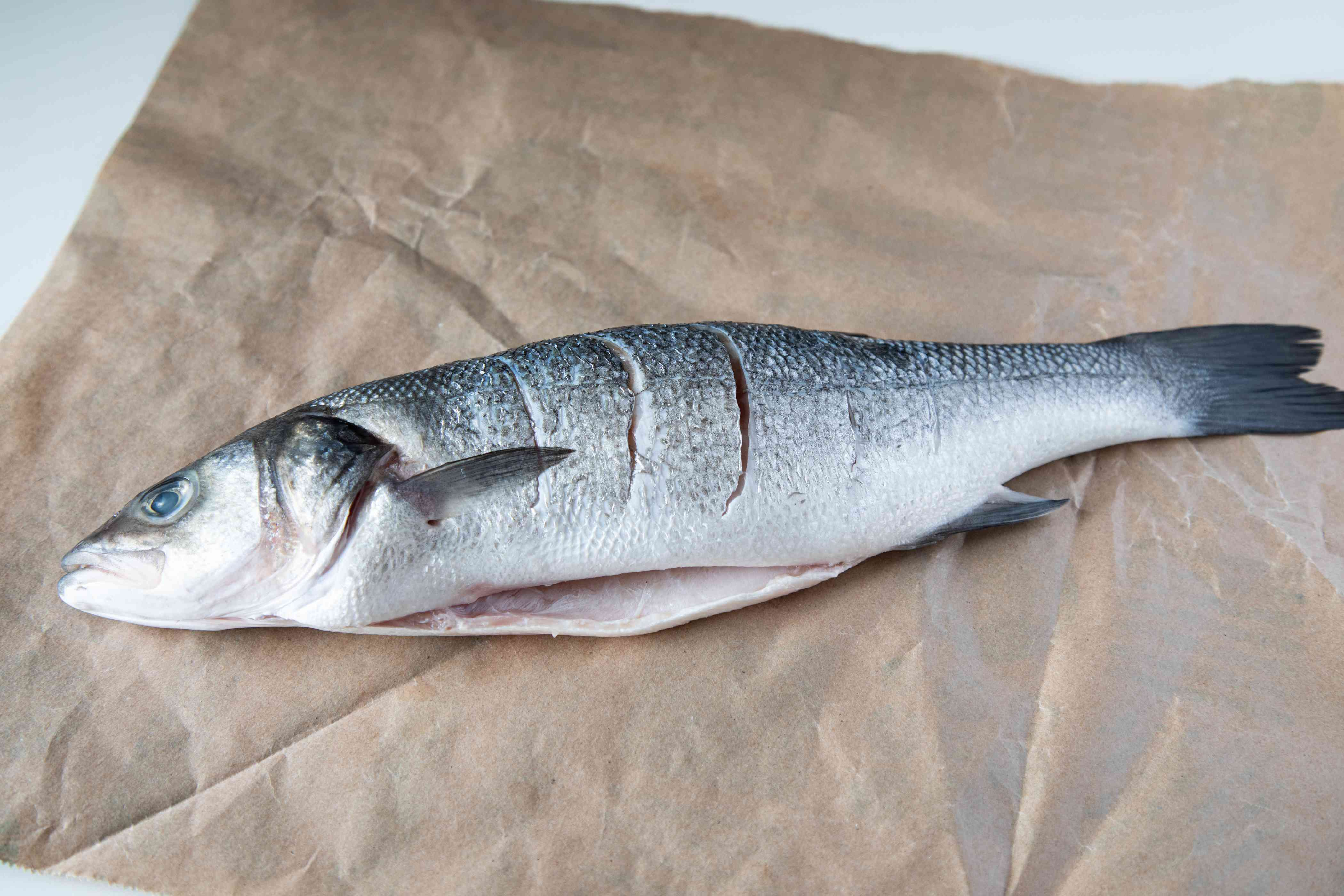 A whole branzini fish with slashes down the side of it.