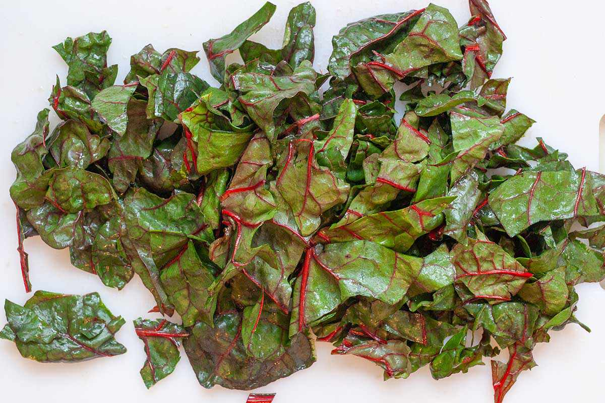 Chopped swiss chard leaves on a white cutting board. Stems are removed.
