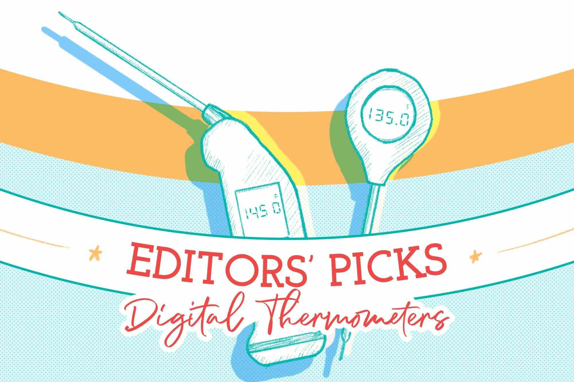 editors' picks digital thermometers