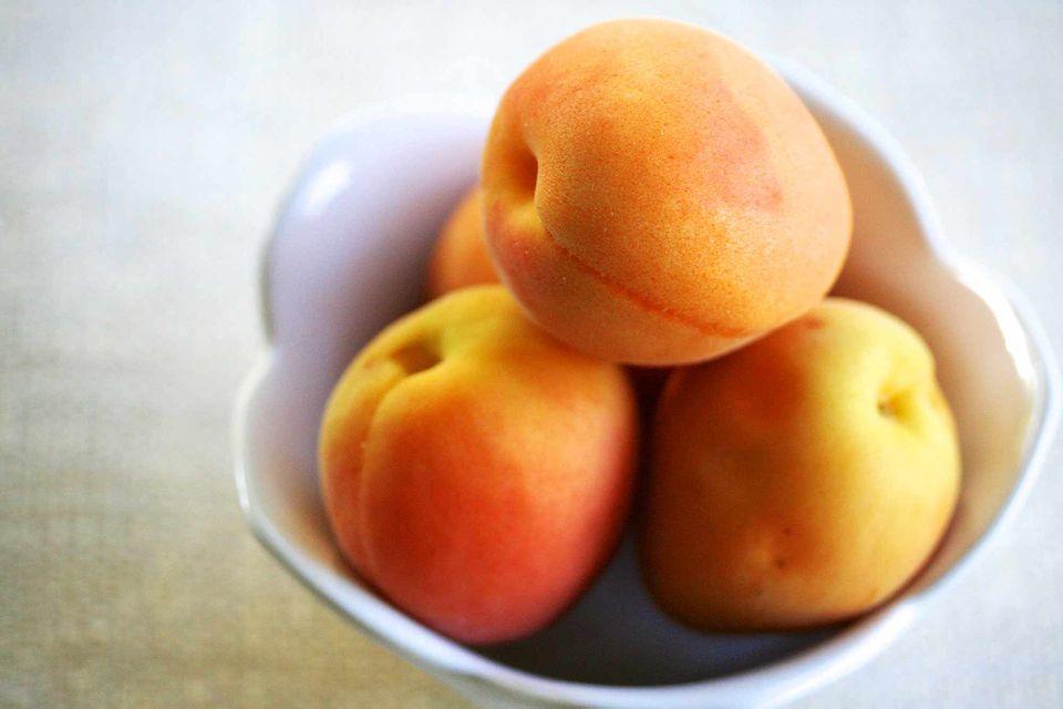 Best Apricot Recipes