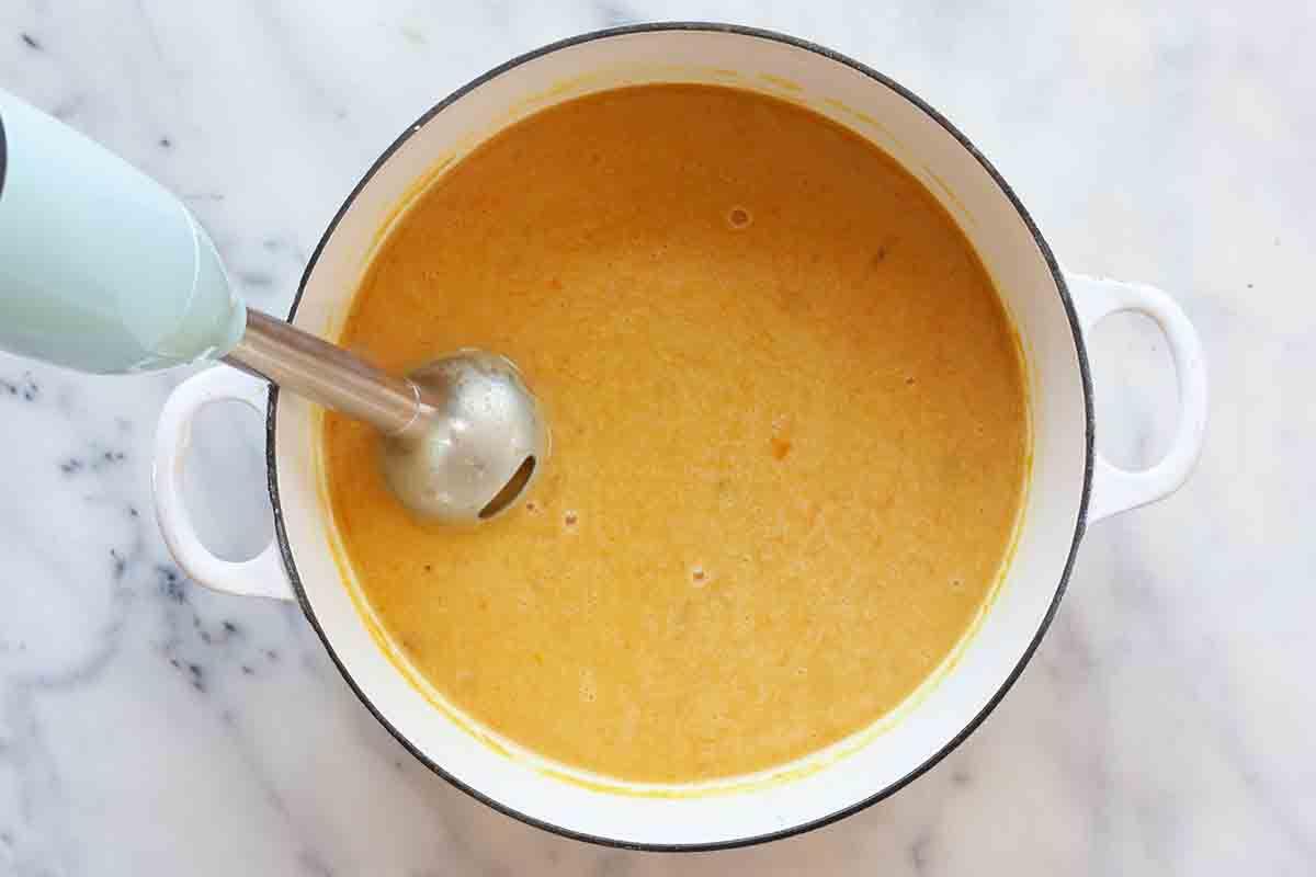 Chicken Stew Recipe add the pureed veggies