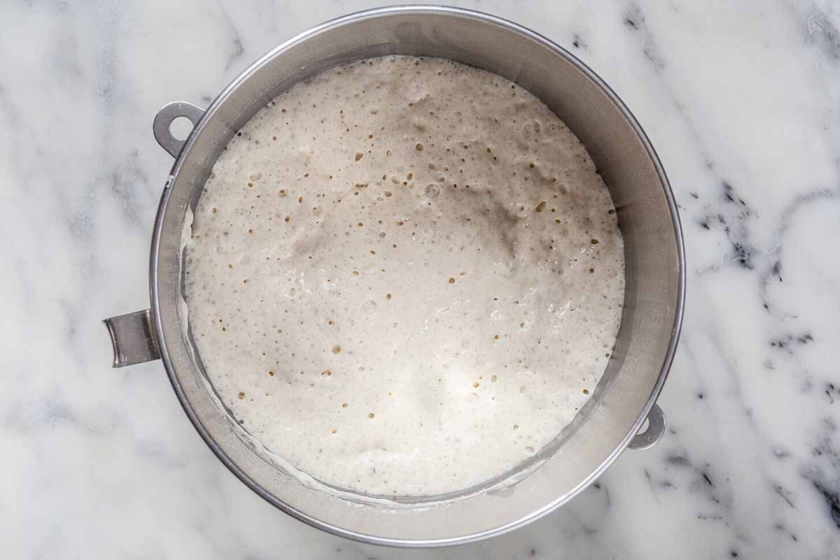 Fermented Sponge starter in a silver mixing bowl for Stollen recipe.