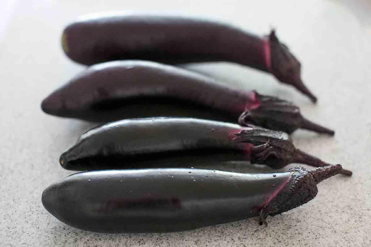 Four Japanese Eggplant