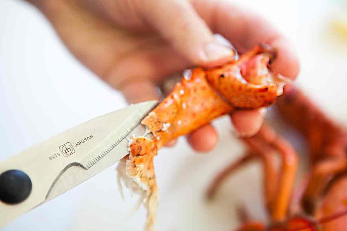 Use scissors or a nutcracker to break open the lobster joints