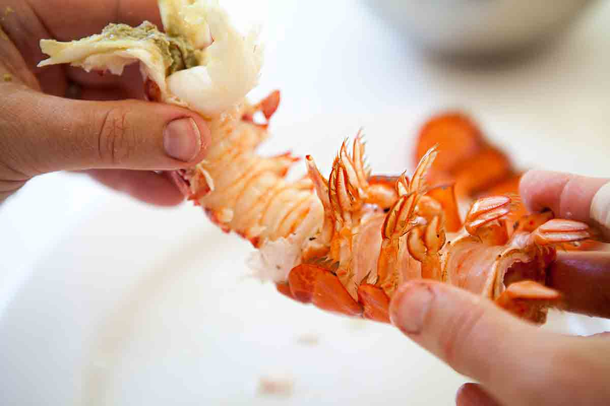 Pull out the lobster tail meat