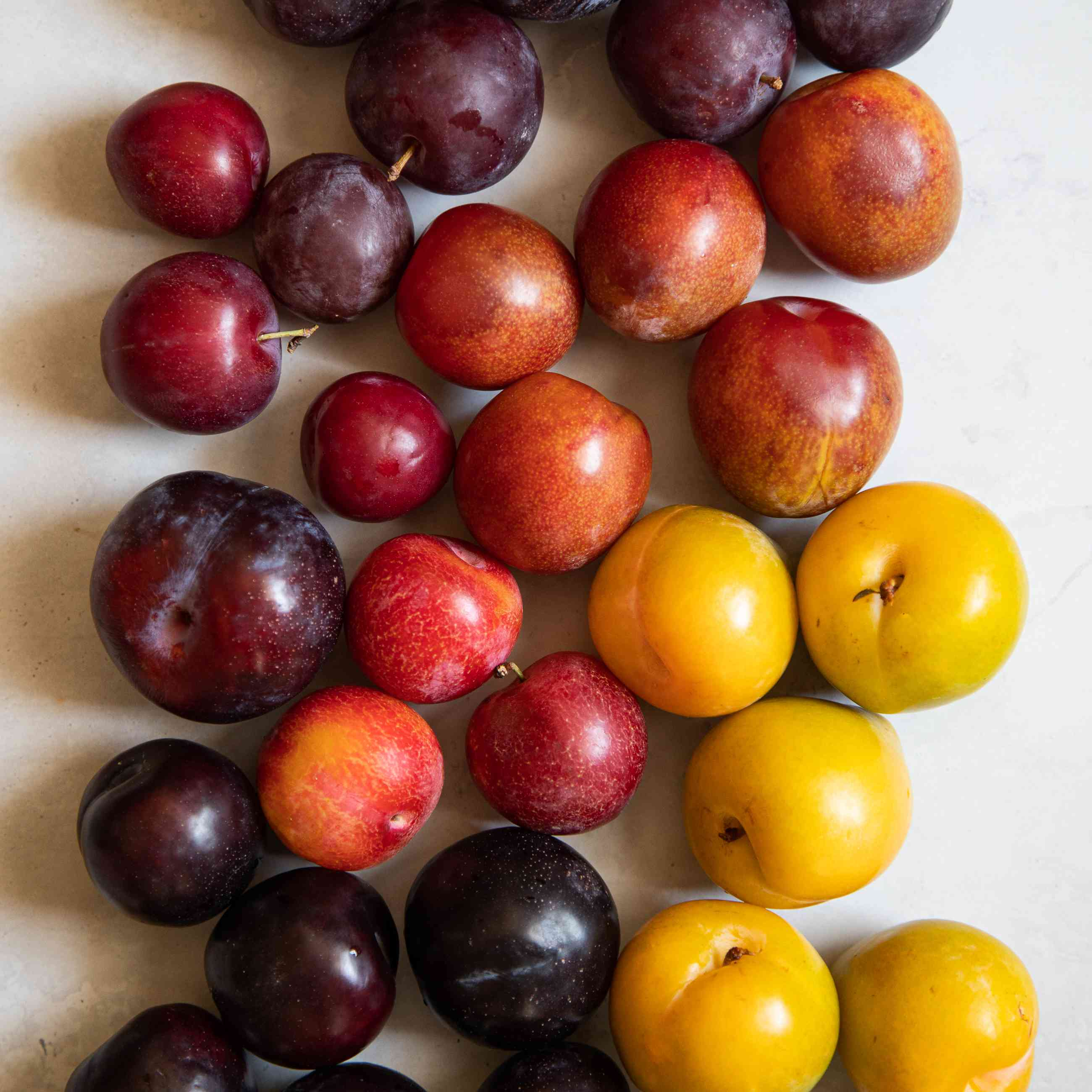Colorful variegated collection of plums