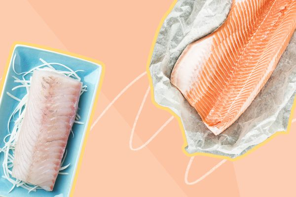 Photo composite of salmon and white fish filets