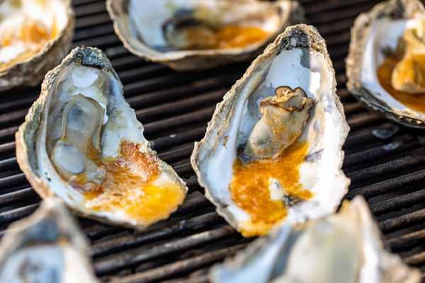 Oysters on the grill to show how to grill oysters.