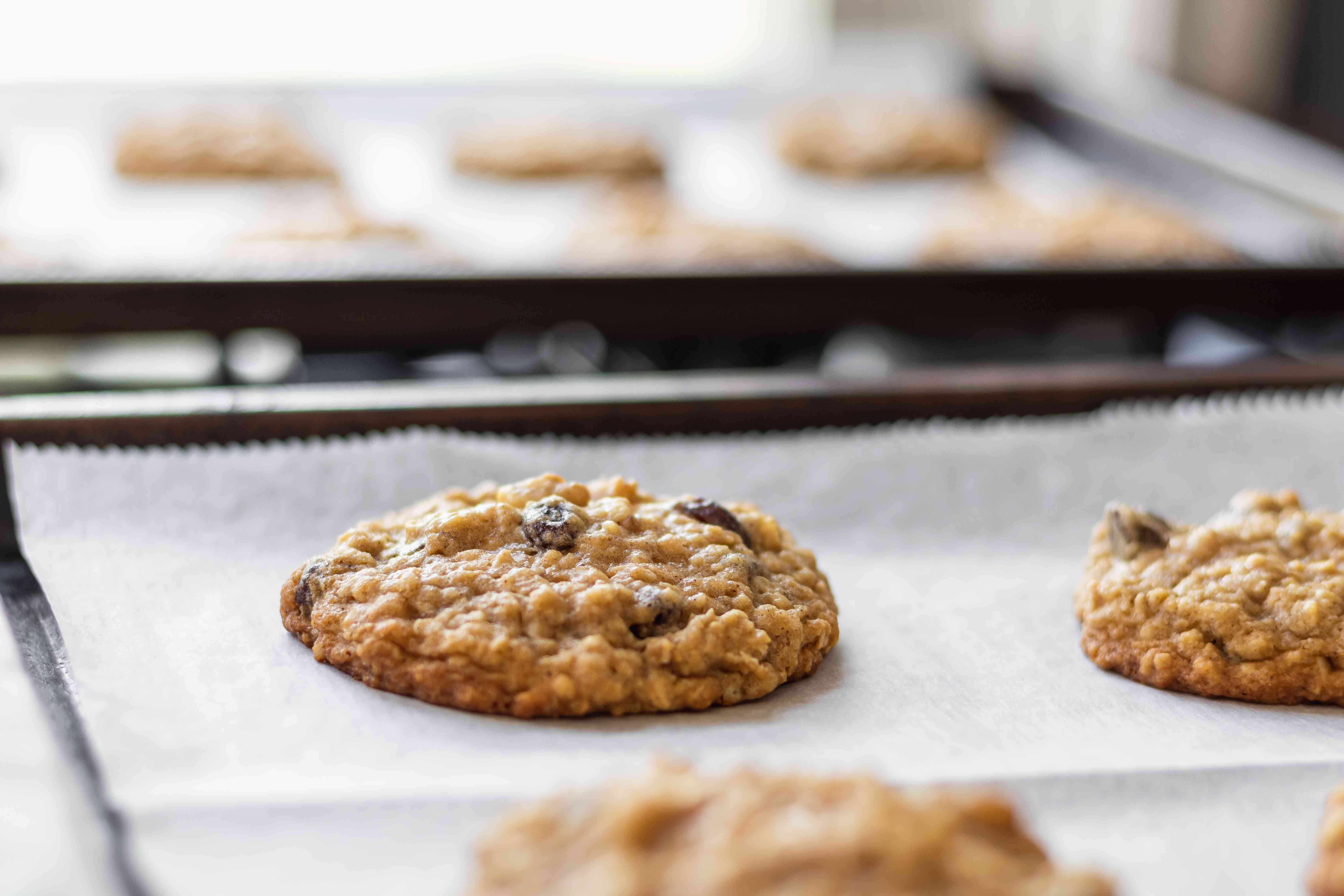 Side view of baked Oatmeal Raisin Cookies on a parchment lined baking sheet.