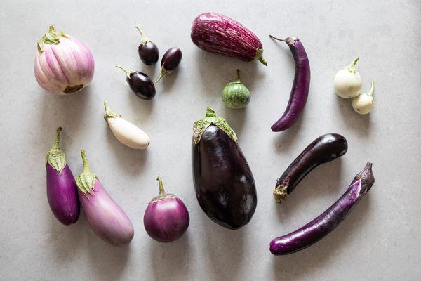 All kinds of varieties of eggplant