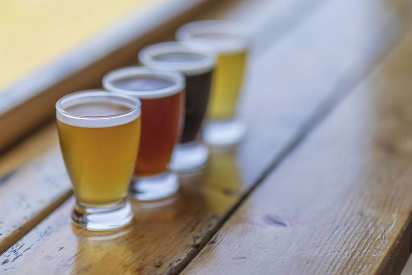 A look at a four beer flight which contains stout, IPA, red and lager beers