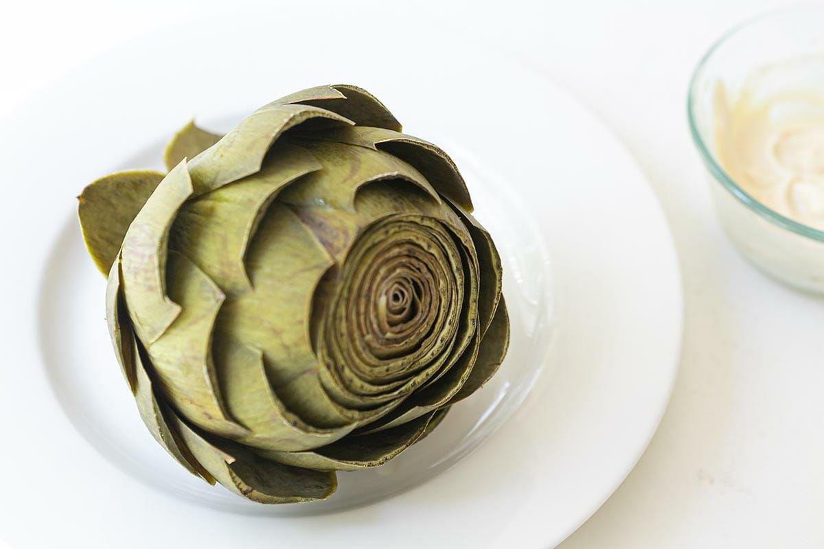 Steamed artichoke on a plate, ready to eat