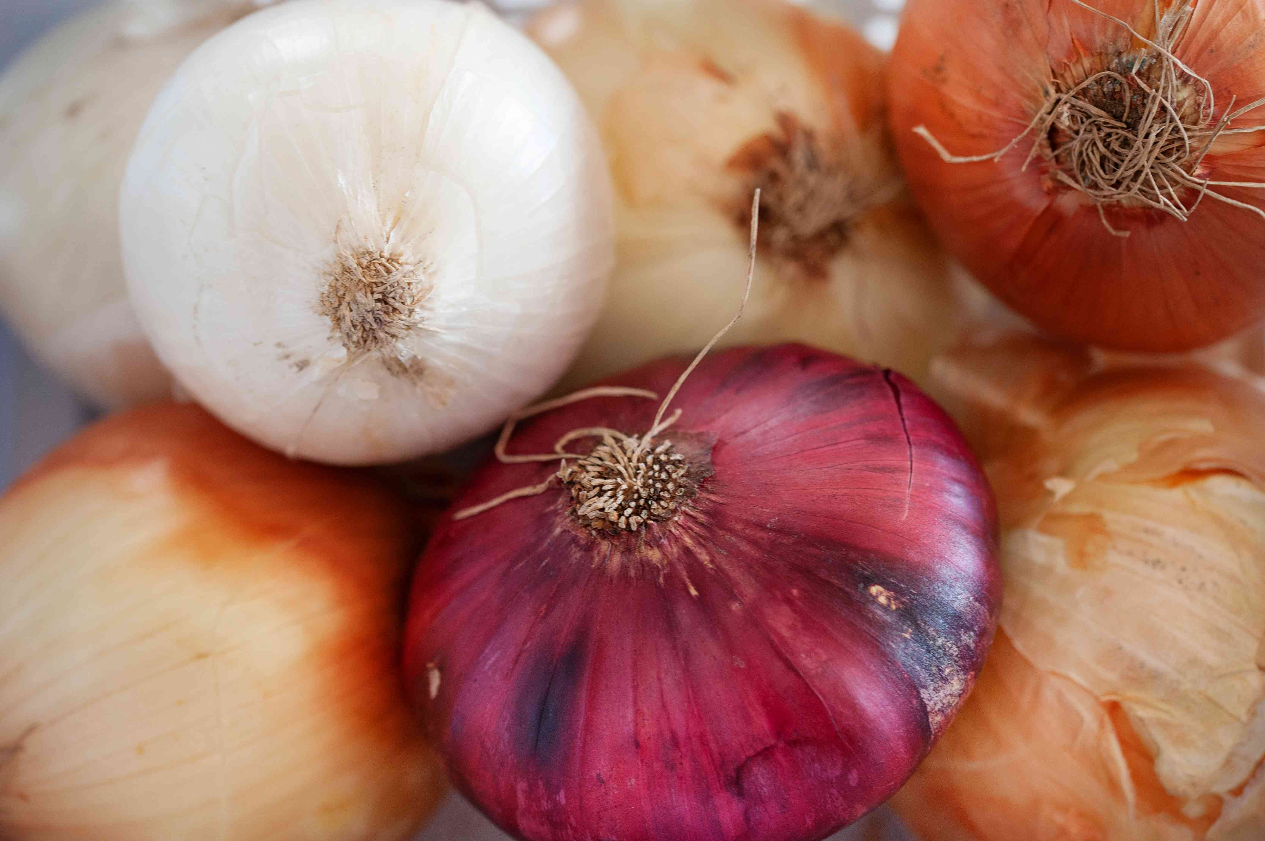 Close up grouping of multi colored onions