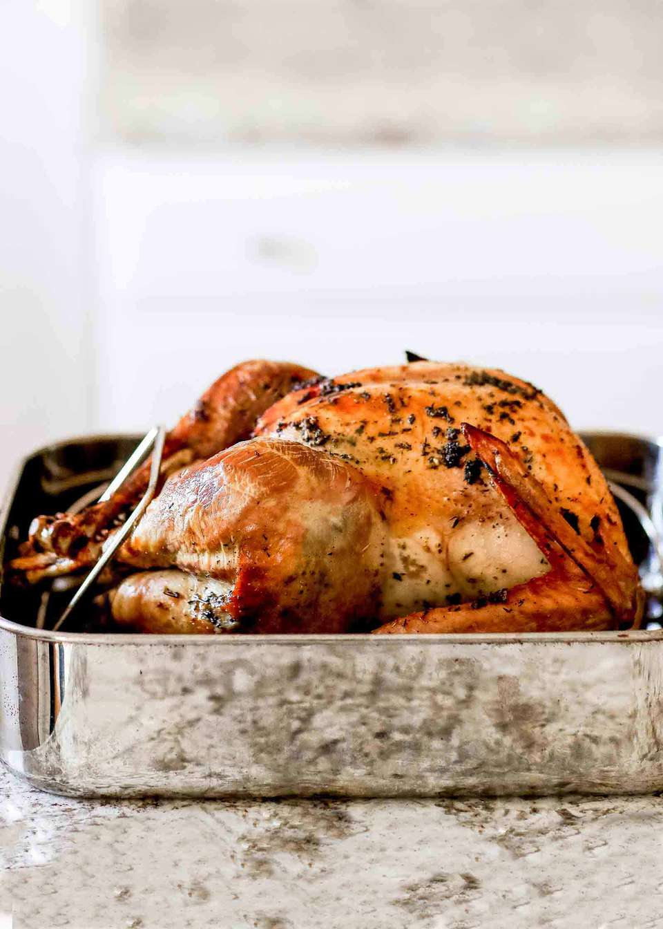 Dry Brined Turkey in Roasting Pan
