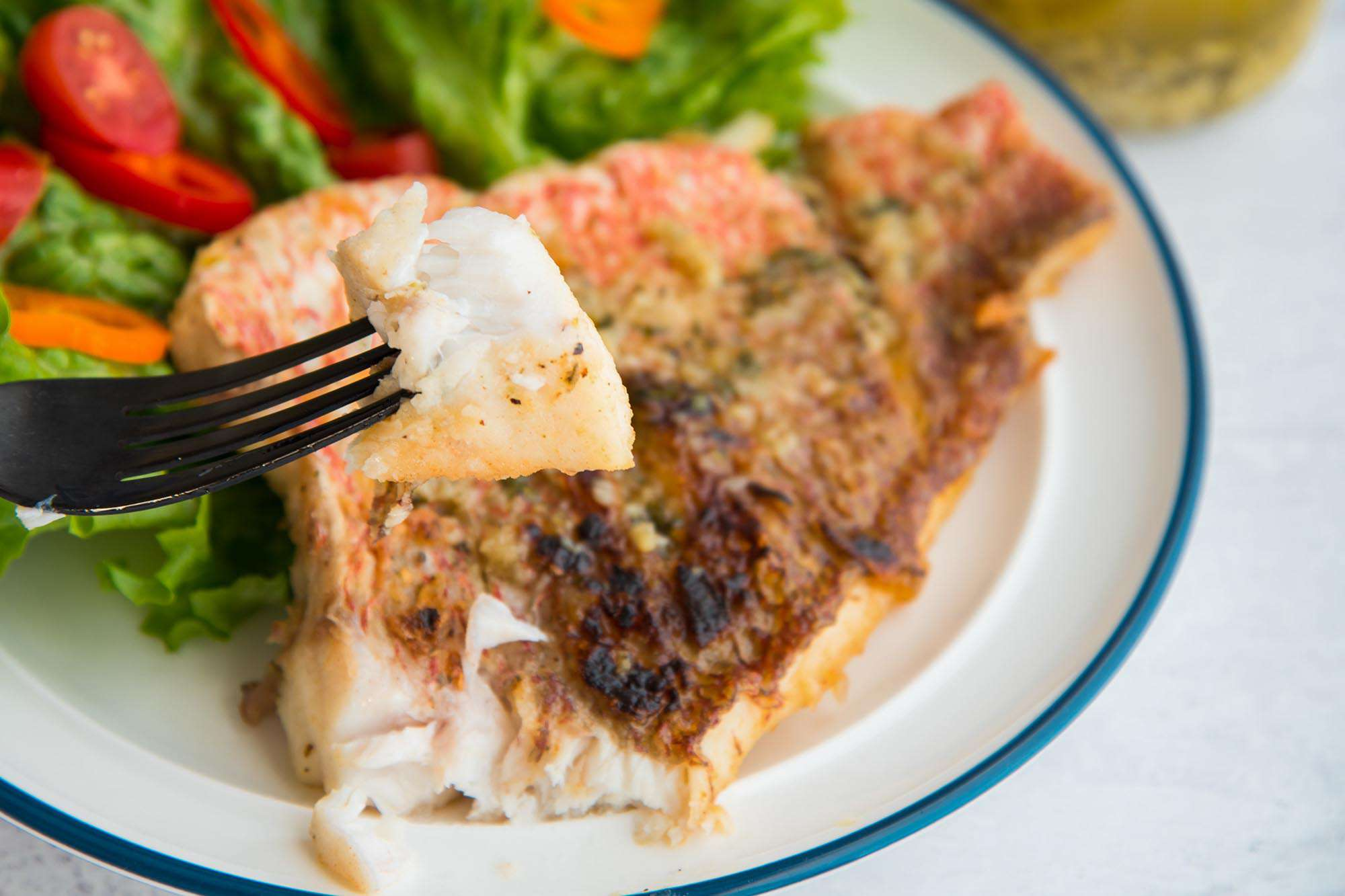 Homemade red snapper is on a white plate with a blue strip around it. A fork is holding a piece of the fillet and a green salad with red and orange peppers is on the plate behind the lenten fish with garlic sauce.