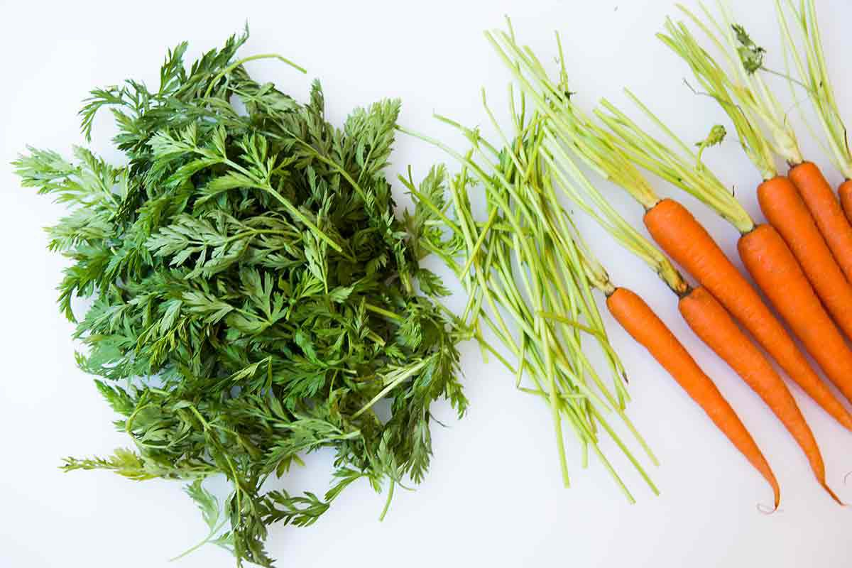 prep carrot tops for carrot top pesto