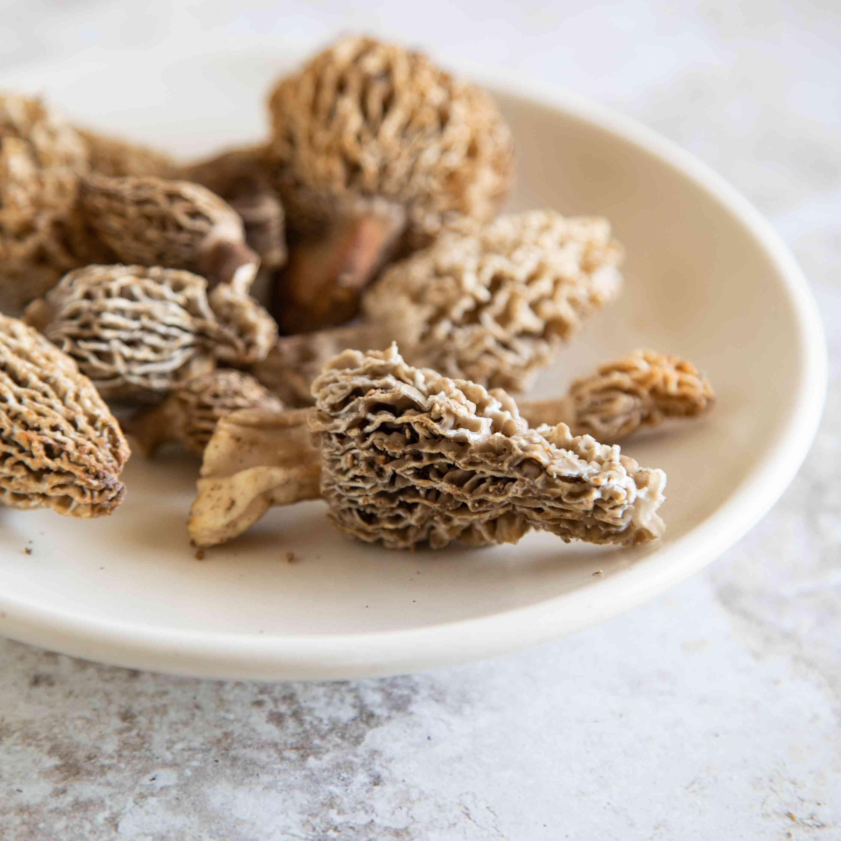 Closeup of veiny brown morel mushroom on white plate