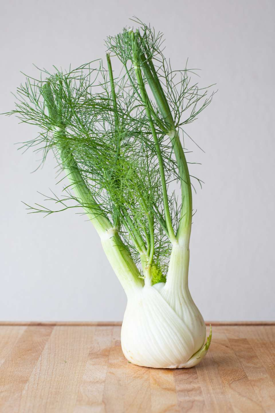 Large fennel bulb and green fronds on wood surface