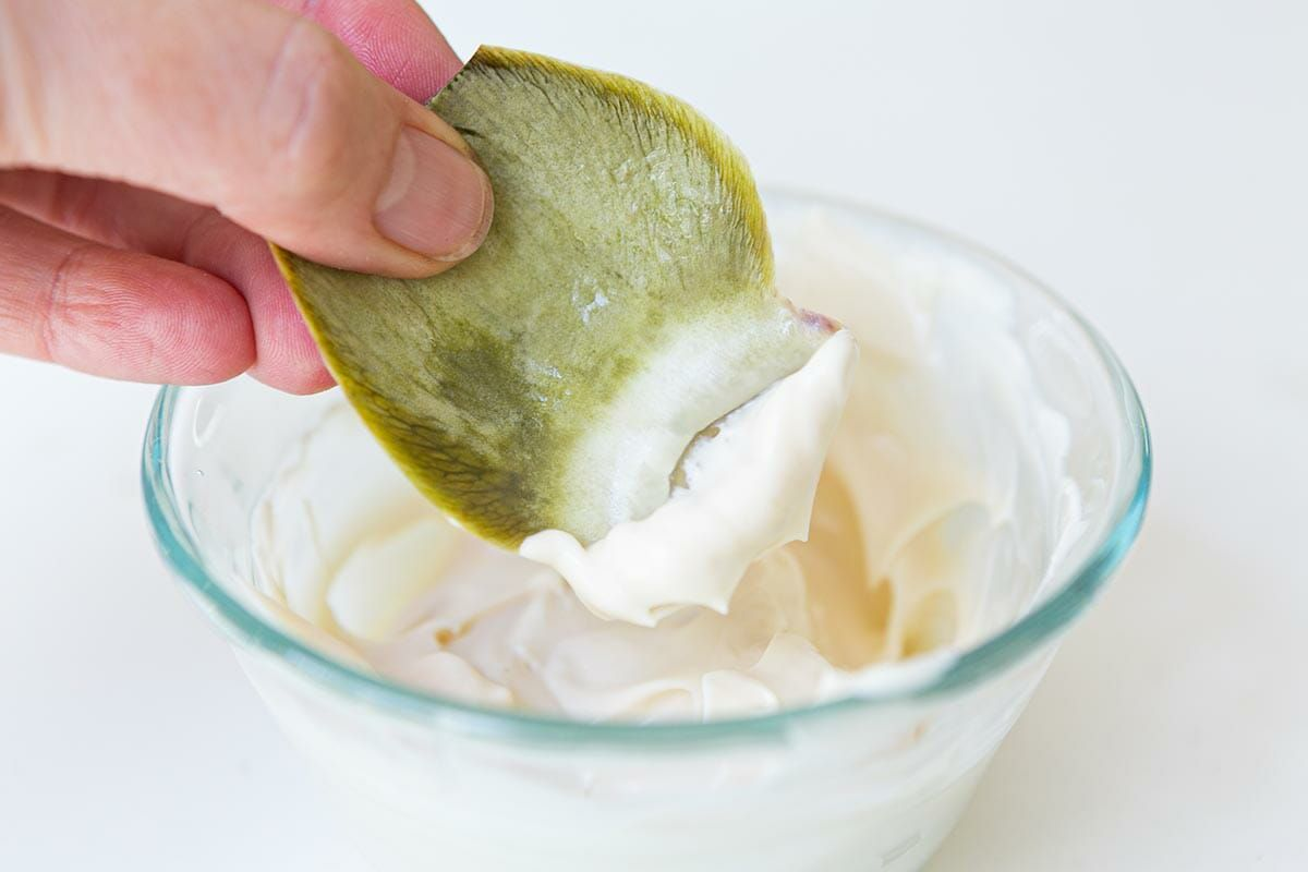 Dip the artichoke leaves in melted mayonnaise