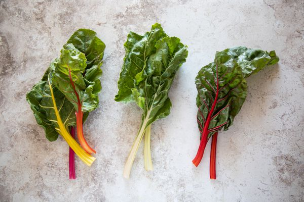 Varieties of Swiss chard with rainbow red and white stems