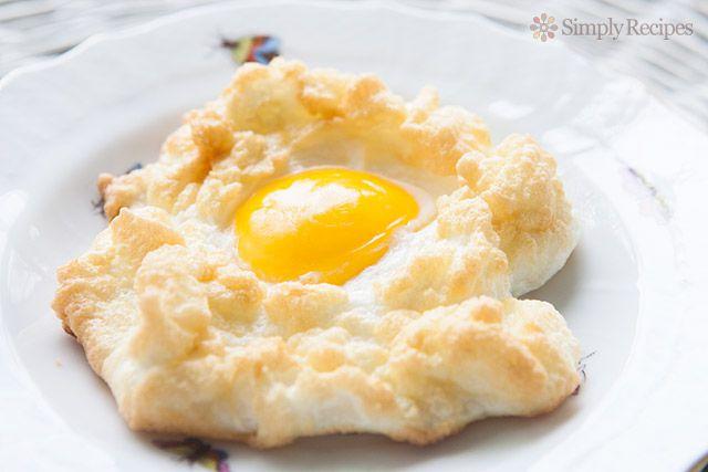 Egg Nests