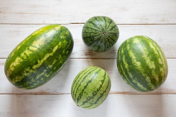Four types and sizes of watermelon
