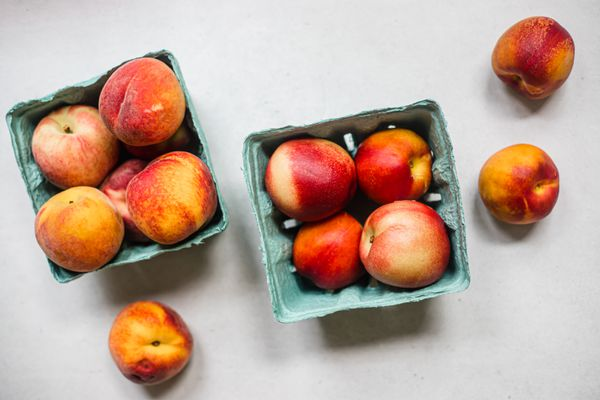 Peaches and nectarines in a turquoise carton container